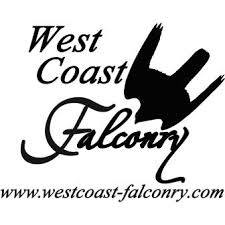 west_coast_falconry